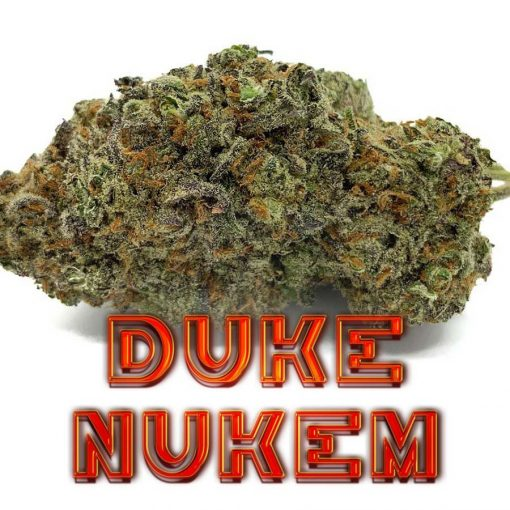 Duke-Nukem-Indica-Flower-Fantastic-Weeds-5